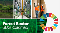 New roadmap to maximize the forest sector's contribution to the SDGs