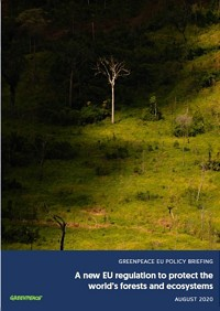 Greenpeace Policy Briefing: EU regulation to protect the world's forests and ecosystems